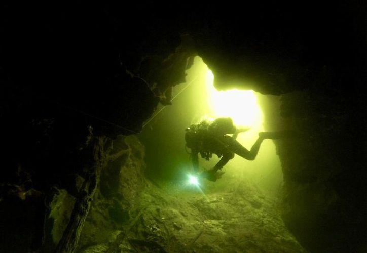 Las zonas subterráneas con mayor alarma se encuentran en los perímetros de Cancún. (Cortesía/ Espeleólogos Cuevas)