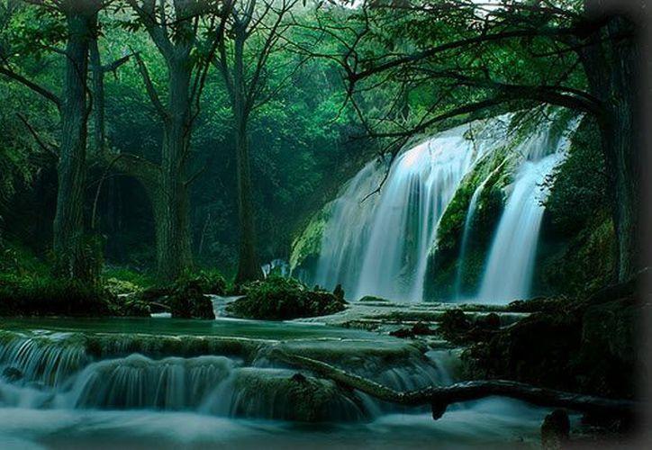 Cascadas El Chiflón, una de las zonas ecoturísticas más impresionantes de Chiapas. (blog.mexicodestinos.com)