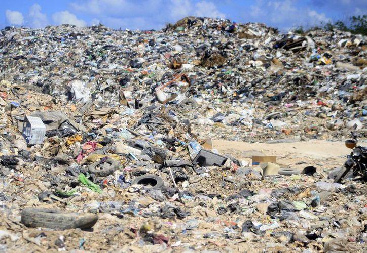 Los residuos están fuera del sitio controlado, a orillas del camino y sobre vegetación perturbada, asegura la delegada federal, Ludivina Menchaca Castellanos. (Harold Alcocer/SIPSE)