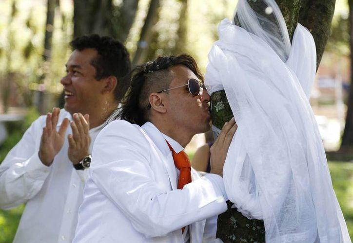 Richard y el árbol fueron declarados 'compañeros de vida y amor puro para siempre'. (AP)