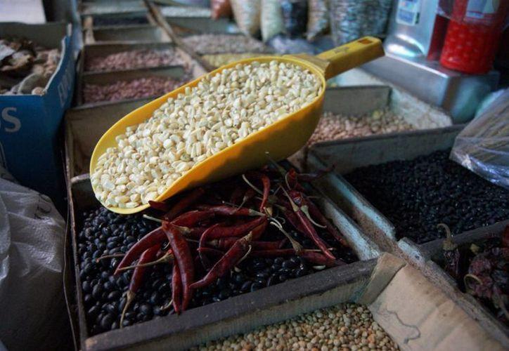 El rendimiento de maíz a nivel nacional es de 3.17 toneladas por hectárea, lo que está 38 por ciento por debajo del promedio mundial. (Archivo/Notimex)