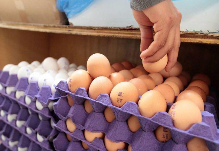 El huevo es uno de los productos que ha tenido altibajos en su precio, dependiendo el lugar de su venta. En Puebla se cotizó en 22 pesos por kilo, según la Profeco. (Foto de Notimex)