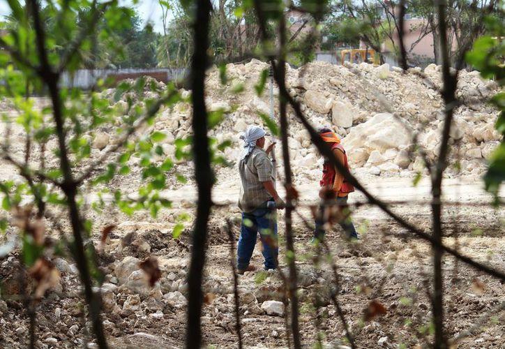 La regidora de la comisión de obras públicas comentó que podría tratarse de un descubrimiento trascendental para conocer más la cultura Maya. (Foto: Octavio Martínez/SIPSE)