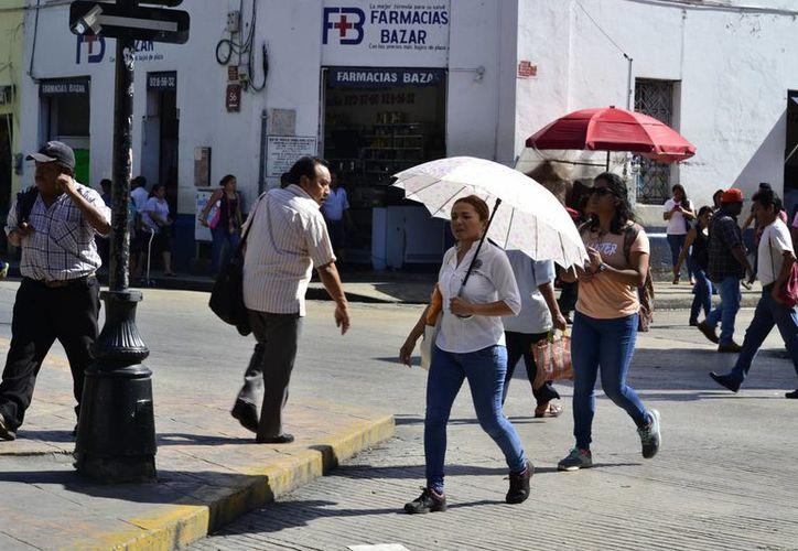 Ayer hubo una temperatura máxima de 34 grados en Mérida. Para los próximos días las máximas irán de los 31 a los 35 grados, entre lluvias. (SIPSE)