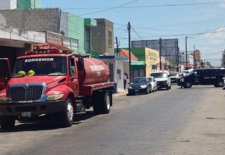 El ataque de abejas ocurrió en el centro de Progreso. (Óscar Pérez/SIPSE)