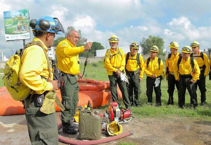 Ayudarán en las labores para suprimir los 50 incendios que han afectado 379 mil 199 hectáreas. (Excelsior)