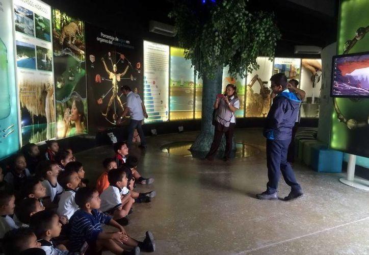 El Museo del Agua se encuentra en la Supermanzana 21 y es de entrada libre. (Redacción/SIPSE)