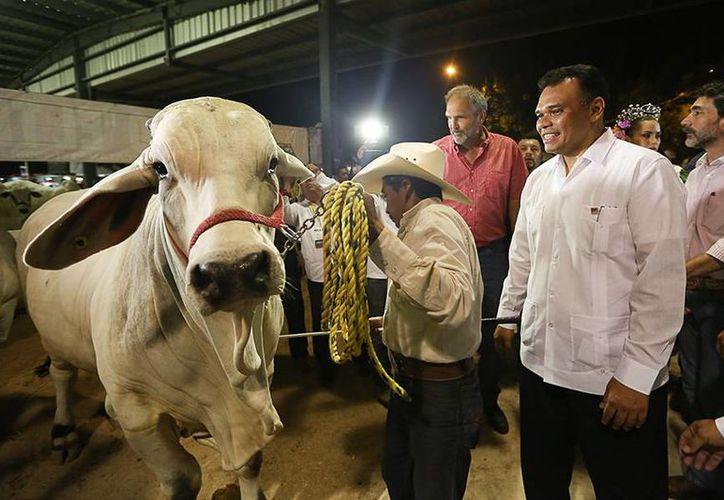 Esta noche comenzó la Feria Yucatán en Xmatkuil. (SIPSE)