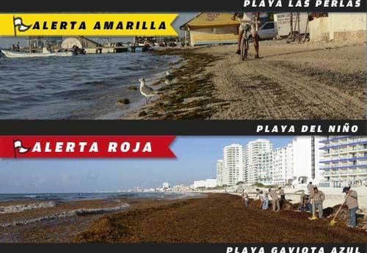 Diariamente informaremos sobre el estado de los arenales de las costas de Quintana Roo. (Redacción/SIPSE)
