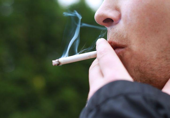 Las células de la nariz podrían ayudar a detectar el cáncer de pulmón. (Tendencias 21)