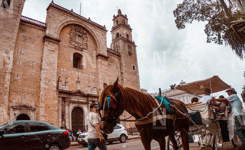 Solo Cozumel, Acapulco, Mérida, Izamal y Motul hace uso de calesas tiradas por caballos en el país. (Adán Kent/Novedades Yucatán)