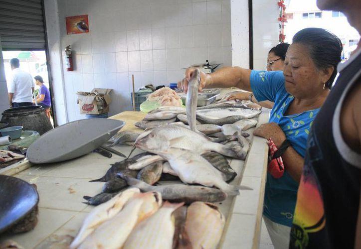 Los distribuidores de pescado y mariscos esperan un repunte de entre un 60% y 70%. (Harold Alcocer/SIPSE)