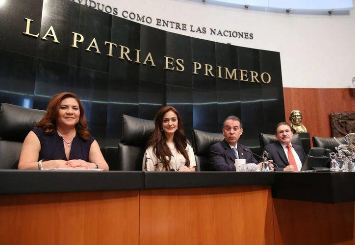 La senadora Rosa Adriana Díaz Lizama (i) en una sesión de la Cámara Alta para discutir la reforma energética. (Cortesía)