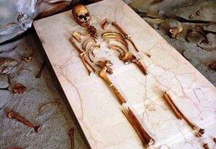 """Los restos humanos integran la muestra """"El hombre temprano en el centro de México"""". (Redacción/SIPSE)"""