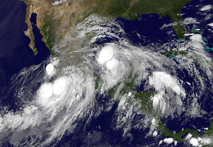 El posible impacto de 'Ingrid' encendió alerta en Veracruz. (Agencias)