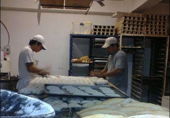 Las panaderías están 'haciendo su agosto' en estos fríos días de noviembre. (Óscar Pérez/SIPSE)