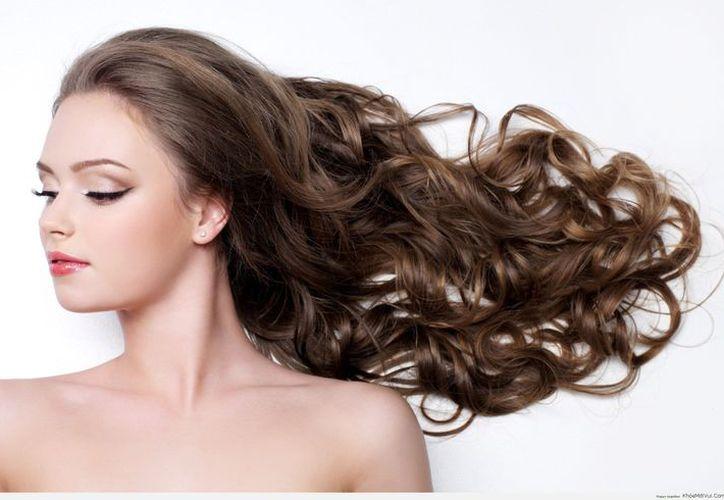 Conociendo las vitaminas necesarias y en qué alimentos se encuentran, puedes crear tus propias dietas para reforzar su cabello. (Internet)