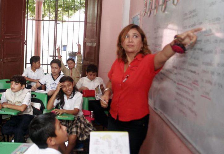 El pago del jugoso bono a los maestros se realizará entre el 8 y el 10 de diciembre. (SIPSE)