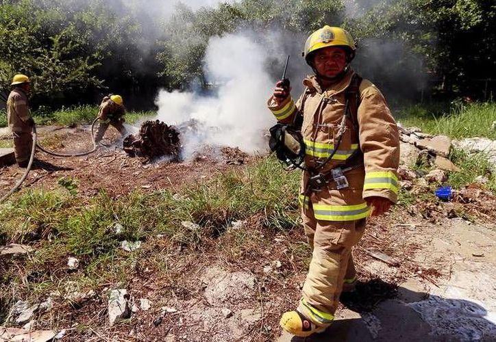 Protección Civil pide a la ciudadanía extremar precauciones y evitar acciones de peligro que puedan desatar incendios. (SIPSE)