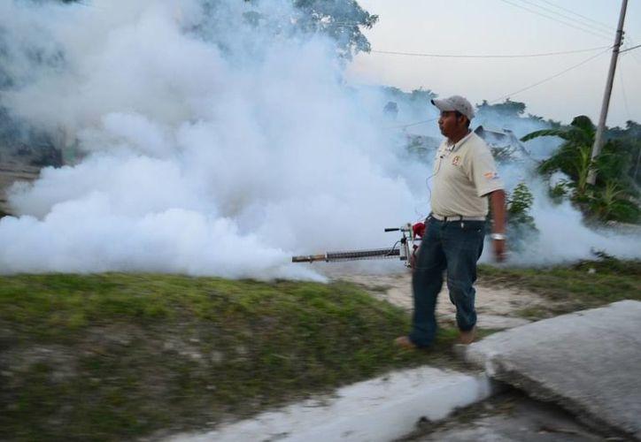 Quintana Roo emplean todos los recursos posibles para evitar el aumento de casos de dengue. (Harold Alcocer/SIPSE)