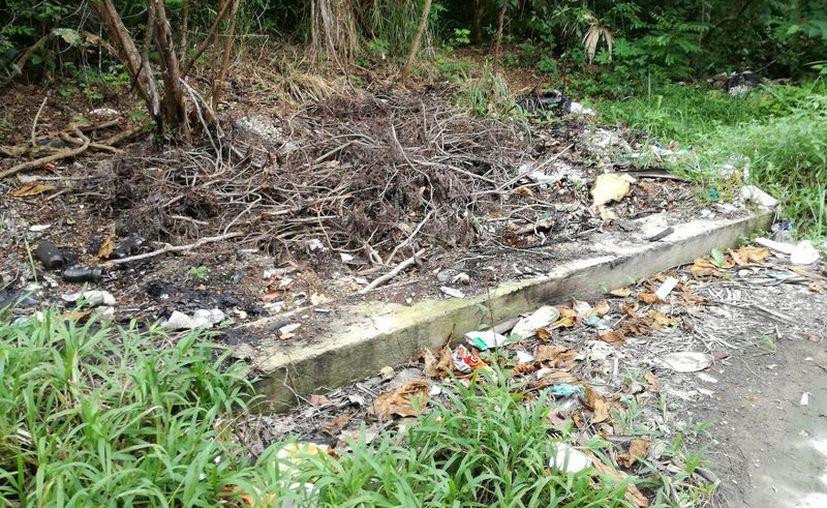 A nivel nacional, en promedio, una persona genera 990 gramos de desechos, pero en Chetumal es de mil 240 gramos. (Joel Zamora/SIPSE)