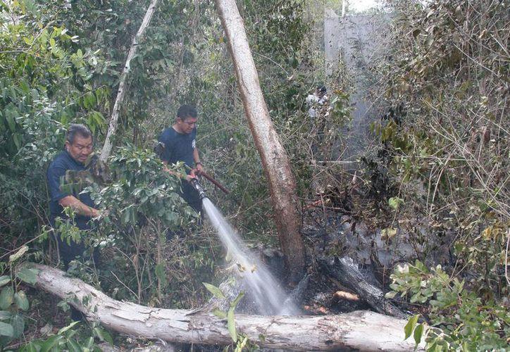 Comienzan preparativos para atender la temporada de incendios forestales. (Julián Miranda/SIPSE)