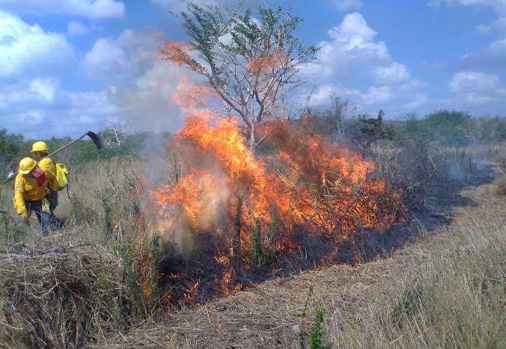 Se tratarán temas como  las principales causas de los incendios. (Foto: Redacción)