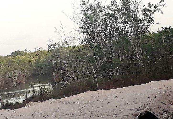Los predios que están rellenando se ubican a orillas del Río Hondo. (Javier Ortiz/SIPSE)