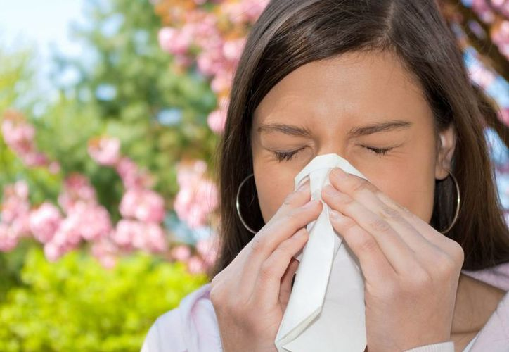 Durante decenios, los alérgicos al polen tenían dos opciones para aliviar su mal: píldoras o atomizadores nasales, que los aliviaban brevemente de los estornudos. (otorrinoalergias.com)