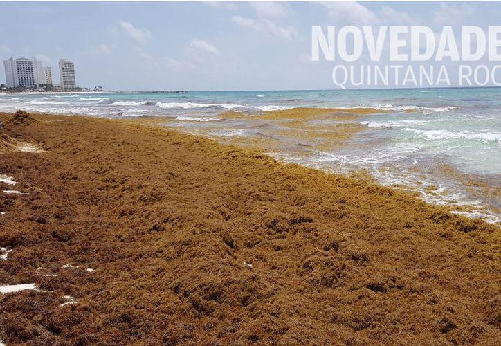 Cancún debe prepararse para la prevención y recuperación de las playas. (Jesús Tijerina)