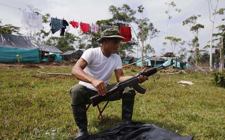 Imagen de un rebelde de las Fuerzas Armadas Revolucionarias de Colombia (FARC) mientras limpia un rifle en el campamento en La Carmelita, en el suroeste de Putumayo. (AP Foto/Fernando Vergara)