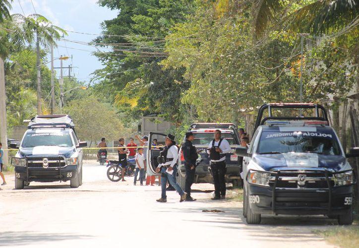 Elementos de Seguridad Pública atendieron el reporte, quienes acordonaron la zona. (Redacción/SIPSE)