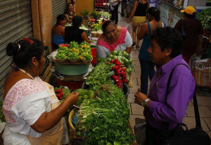Destacan que uno de los mayores méritos de Carrillo Puerto fue el dar 'visibilidad y lugar a los mayas de ayer'. (Juan Albornoz/SIPSE)