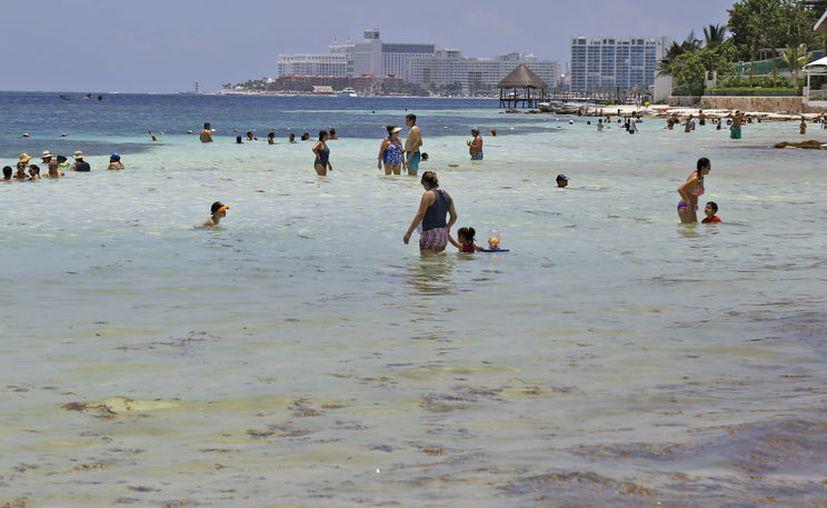 Registró buena participación el programa de limpieza de playa. (Verónica Fajardo/SIPSE)