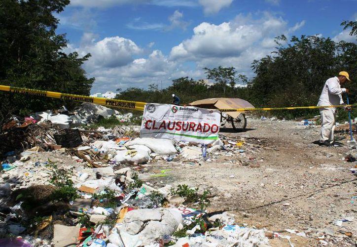 El tiradero clandestino de Villa Maya fue clausurado ayer por el Ayuntamiento de Solidaridad. (Octavio Martínez/SIPSE)
