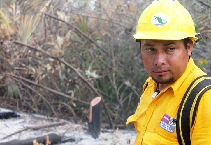 Los 140 brigradistas de la entidad recibieron un homenaje, debido a la efectiva aplicación del plan de prevención de incendios. (Edgardo Rodríguez/SIPSE)