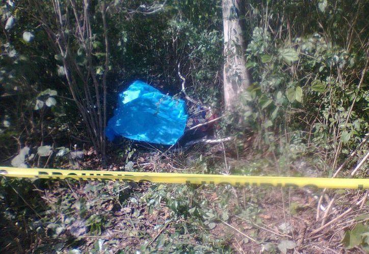 Debajo de un árbol en el monte se encontró el cadáver del cazador, en Buctzotz. (Milenio Novedades)
