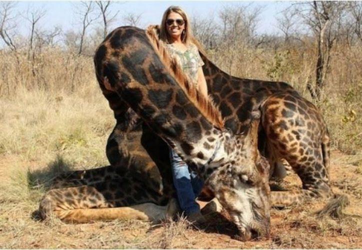 La caza de trofeos es una práctica legal en varios países africanos. (Infobae)