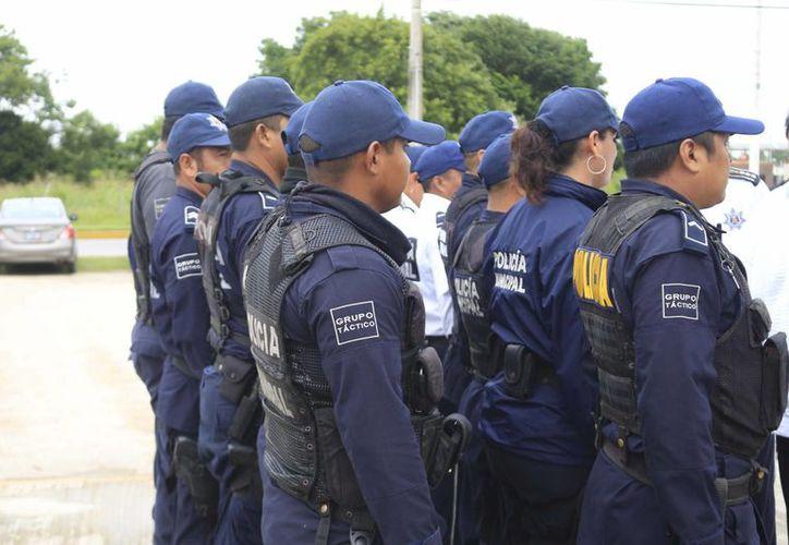 Para  las vacantes, se utilizaran a los cadetes actualmente adscritos a la corporación policial. (Harold Alcocer/SIPSE)