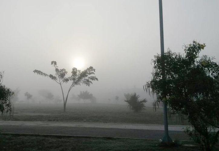 Imagen de la mañana de hoy en el periférico de Mérida, donde se puede observar la densa neblina. (Ana Hernández/SIPSE)