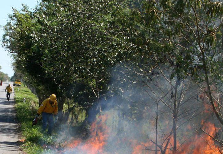 Muchas veces las personas piensan que el fuego se combate con agua, pero no es la única manera de hacerlo. (Novedades Yucatán)