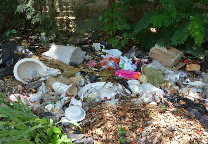 Los basureros clandestinos generan un foco de infección para los que viven en los alrededores. (Gerardo Amaro/SIPSE)
