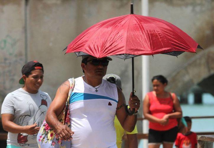 El calor continúa sin dar tregua a los meridanos. Hoy se registró 38.7 grados celsius en Mérida. (José Acosta/Milenio Novedades)