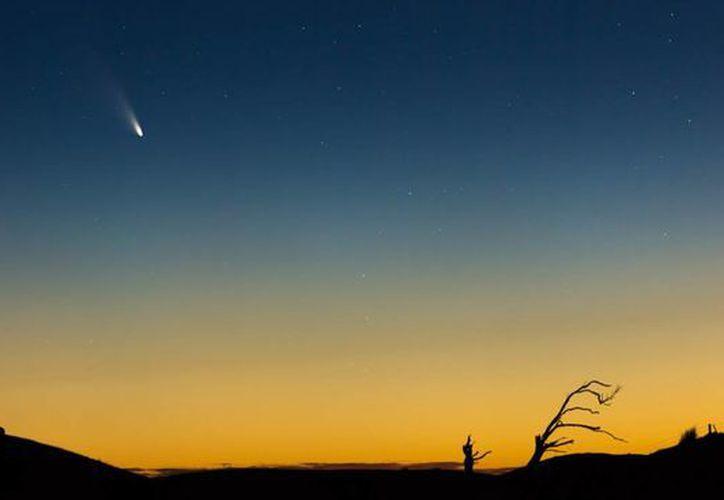 El cometa podrá ser visto con mayor nitidez en los próximos días. (Internet)