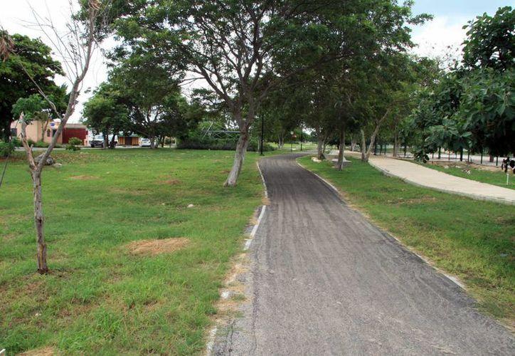 En poco más de un mes comenzará la construcción del Paseo Verde del Norte a cargo de la Coordinación Metropolitana de Yucatán. (Imagen ilustrativa/ Milenio Novedades)