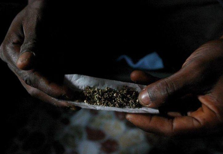 El estudio sobre el uso medicinal de la marihuana se realizó en nueve países de la región. Imagen de contexto. (Archivo/EFE)
