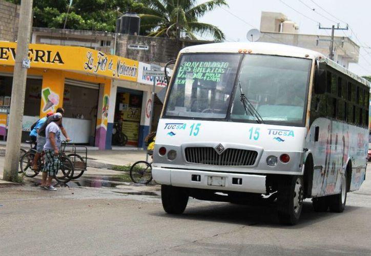 En el municipio circulan un total de 115 camiones de la concesionaria. (Daniel Pacheco/SIPSE)