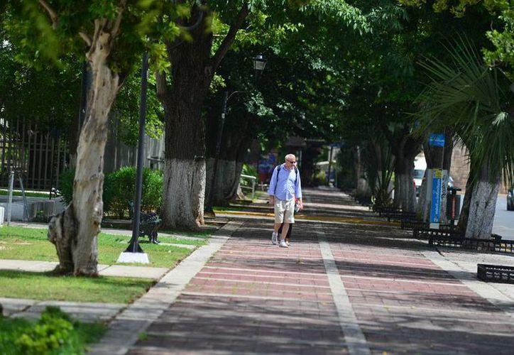 El sábado fue un día caluroso que permitió las actividades normales en la ciudad de Mérida, como el paseo turístico (foto); por la tarde, hubo amenaza de lluvia, pero finalmente no cayó y al menos la zona centro se mantuvo seca. (José Aragón/SIPSE)