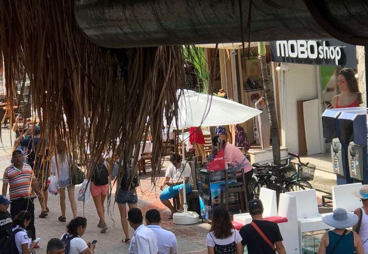 El decomiso ocurrió luego de una denuncia emitida por empresarios de la zona turística. (Octavio Martínez/SIPSE)