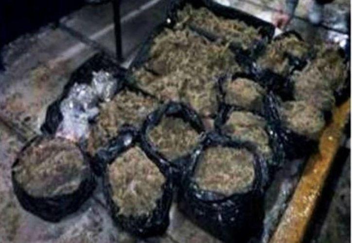 Los agentes descubrieron un total de 337 paquetes con droga que iban mezclados con el envío de 875 cajas de lechuga. (Milenio)